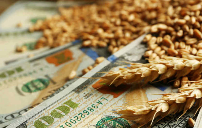 What should farmers do when markets rise